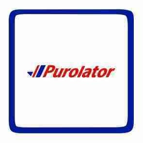 Purolator Express shipping upgrade